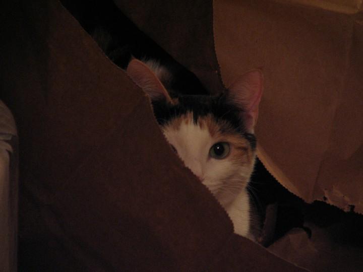She thinks she's hiding.