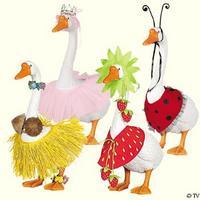 EVERY goose needs a coconut bra.