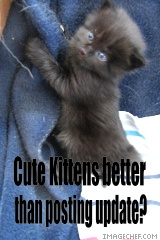 Kittens Fix EVERYTHING